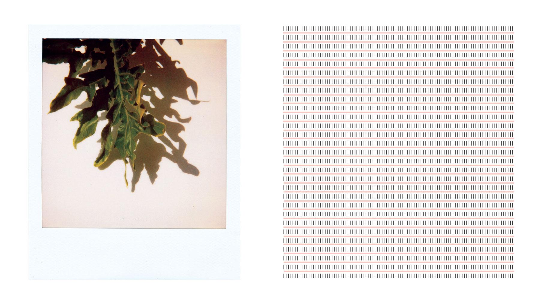 Graphics_polo_4.jpg