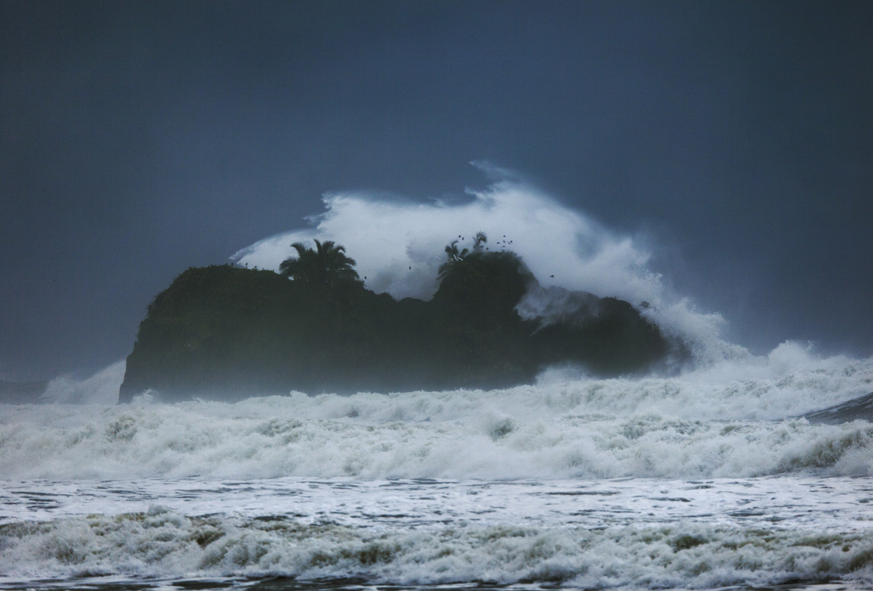 Pretty wild waves
