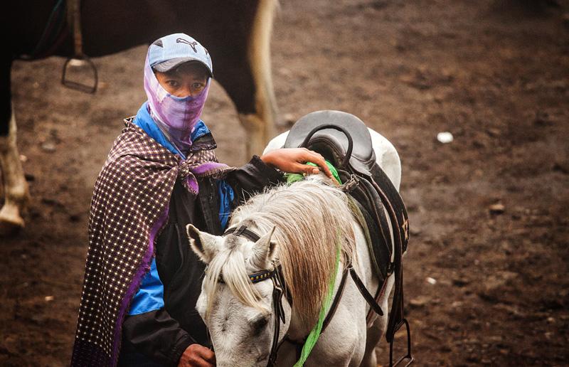 Got some ok photos of the horse guys though