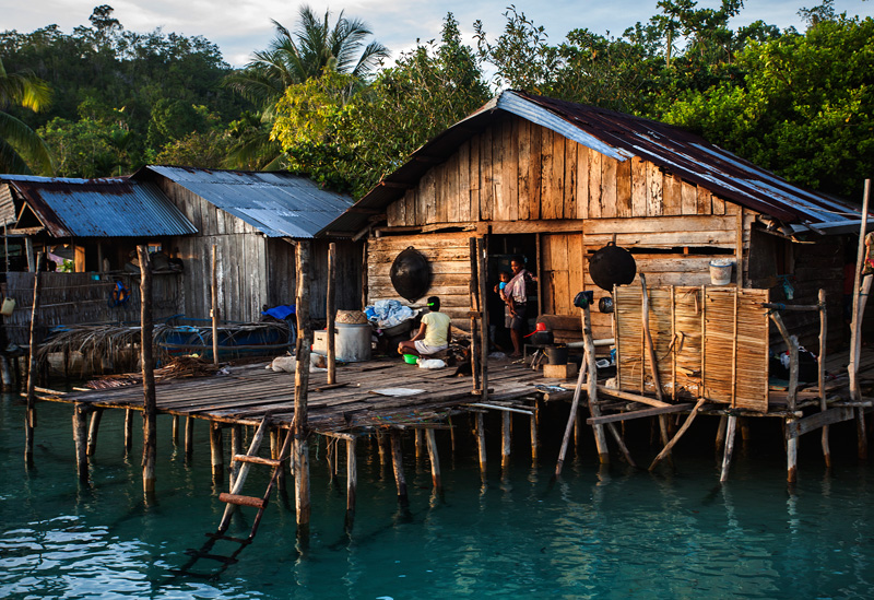 common Papuan housing