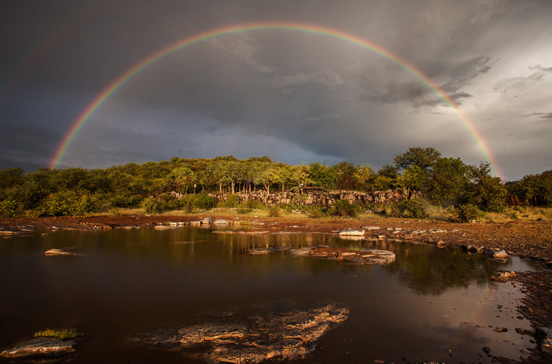 rainbow over the watering hole