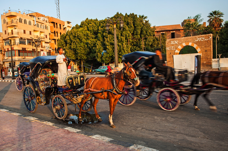 horse buggies outside of the Luxor Temple