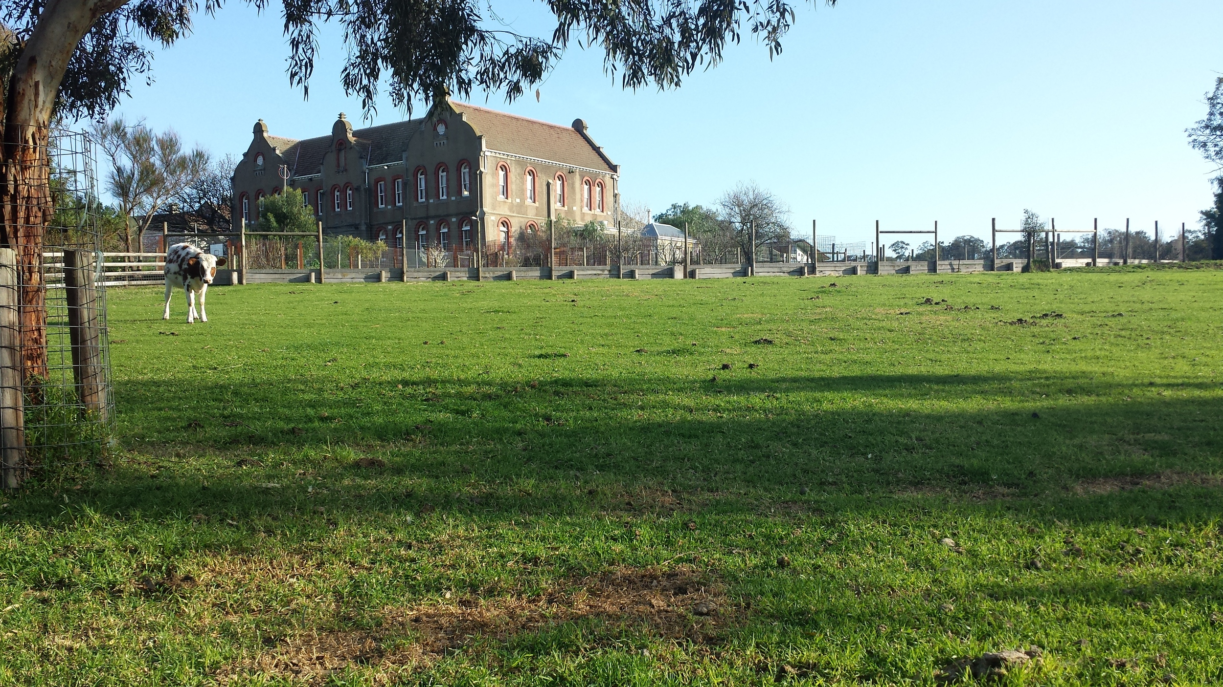 Looking from the Collingwood Childrens' Farm to the Abbotsford Convent.