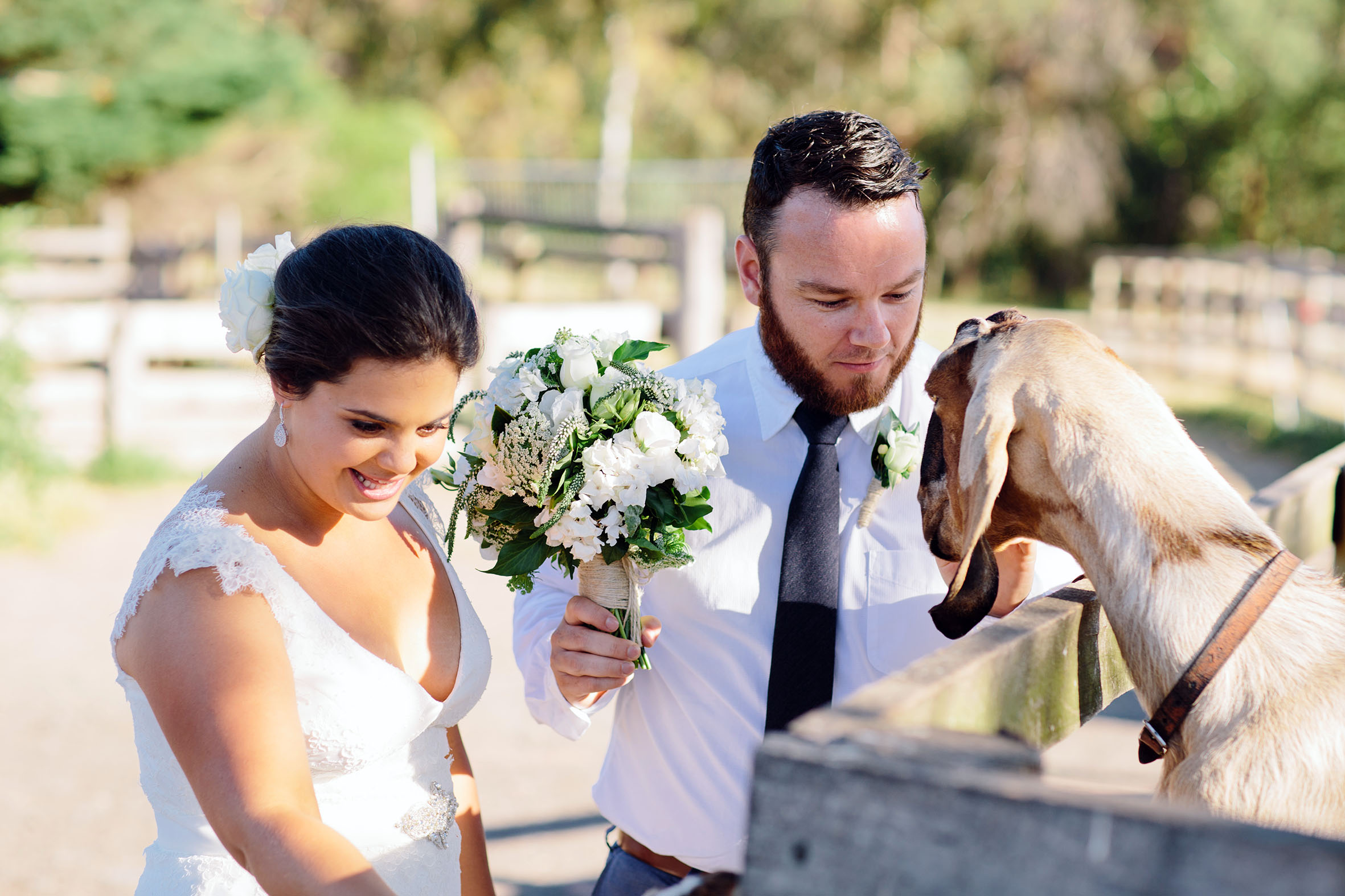 Melbourne wedding farm 2.jpg