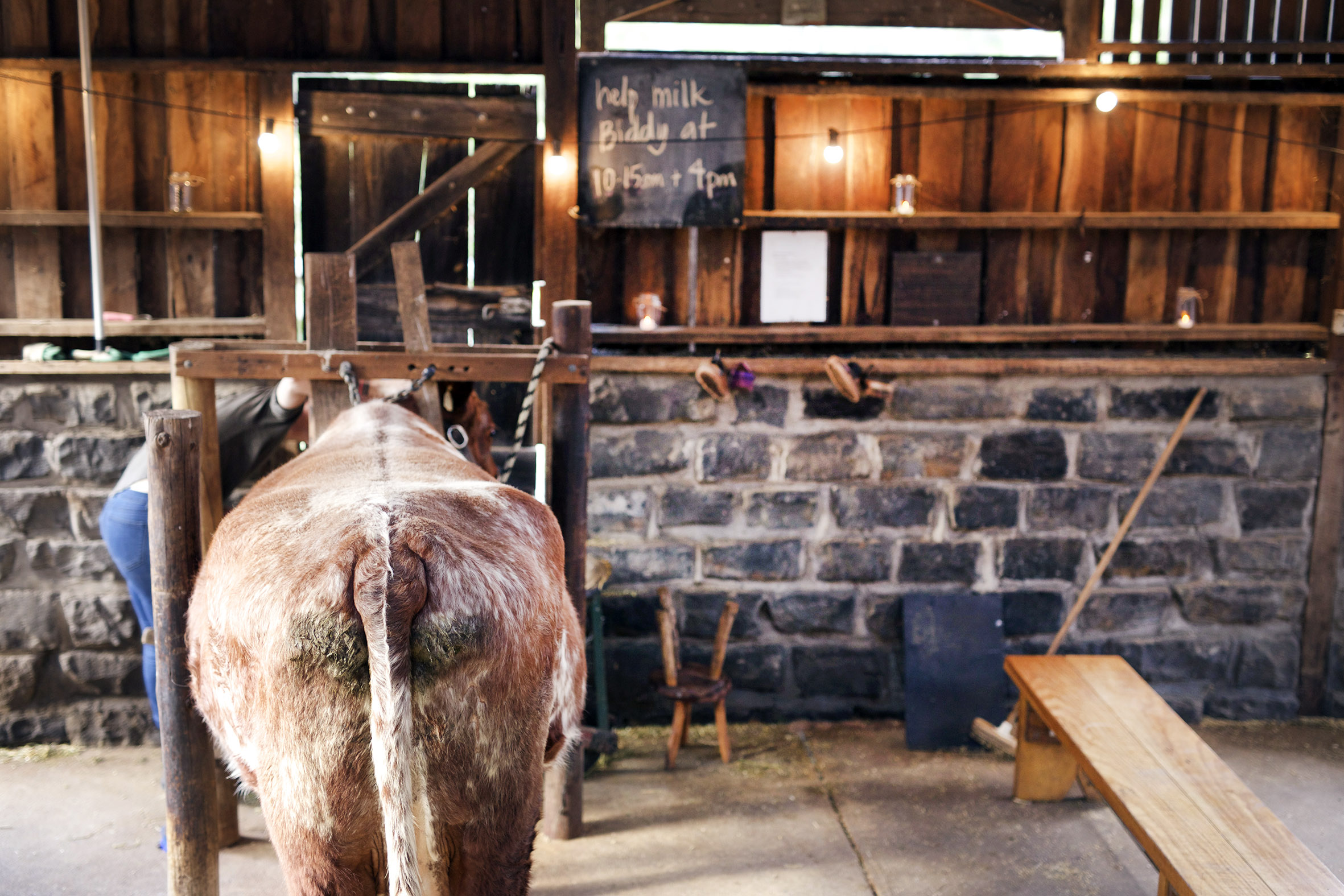 Farm cafe wedding melbourne 14.jpg