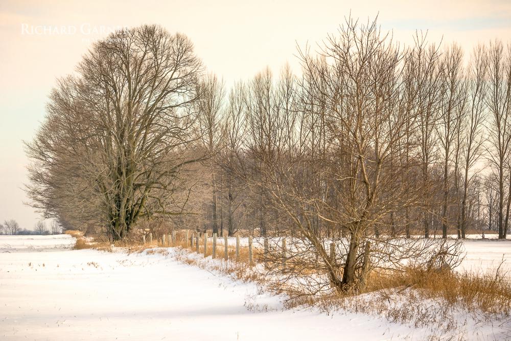 rural-160107-1.jpg