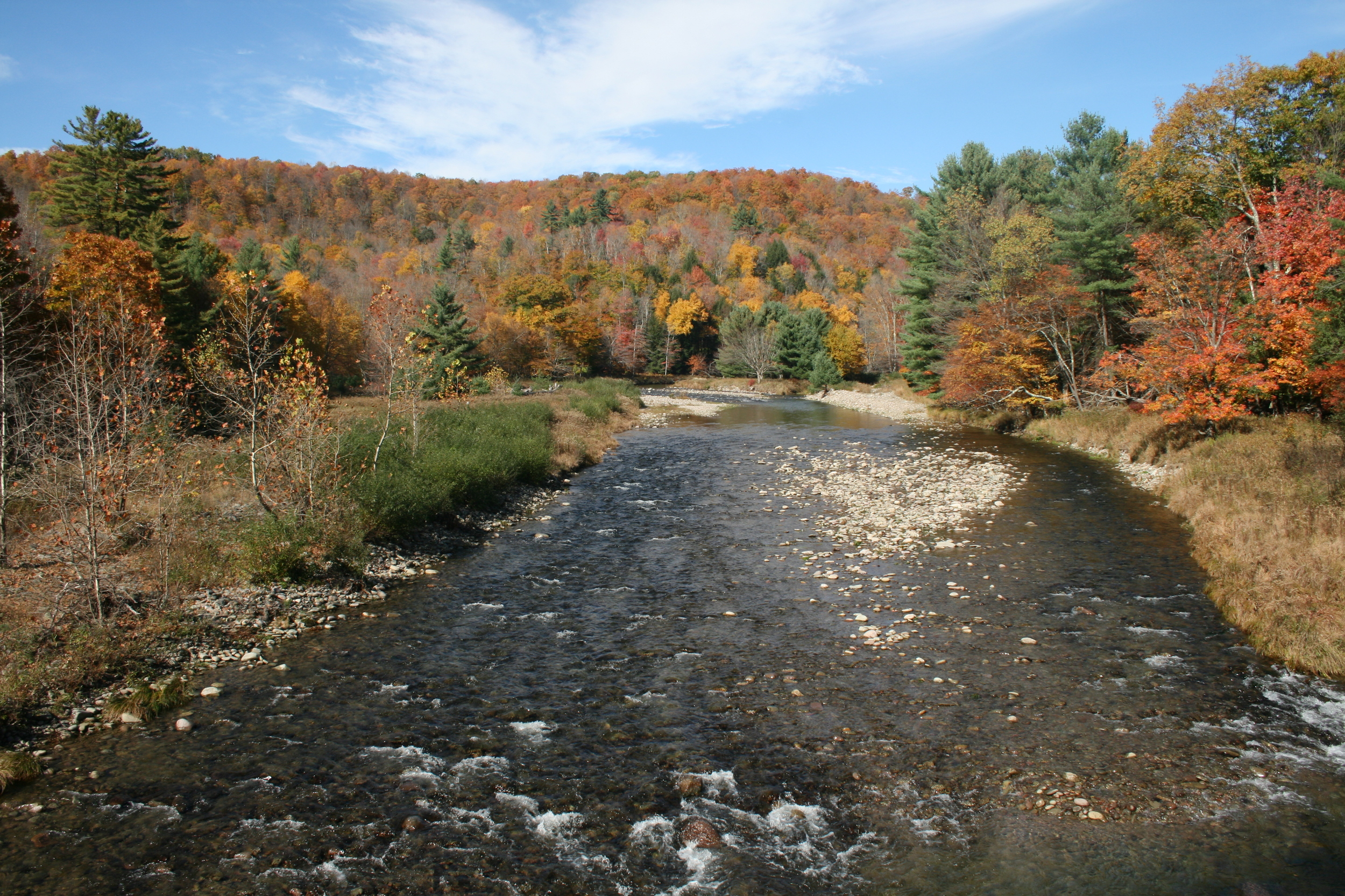 The Neversink River, as seen from Hunter Rd., Claryville.