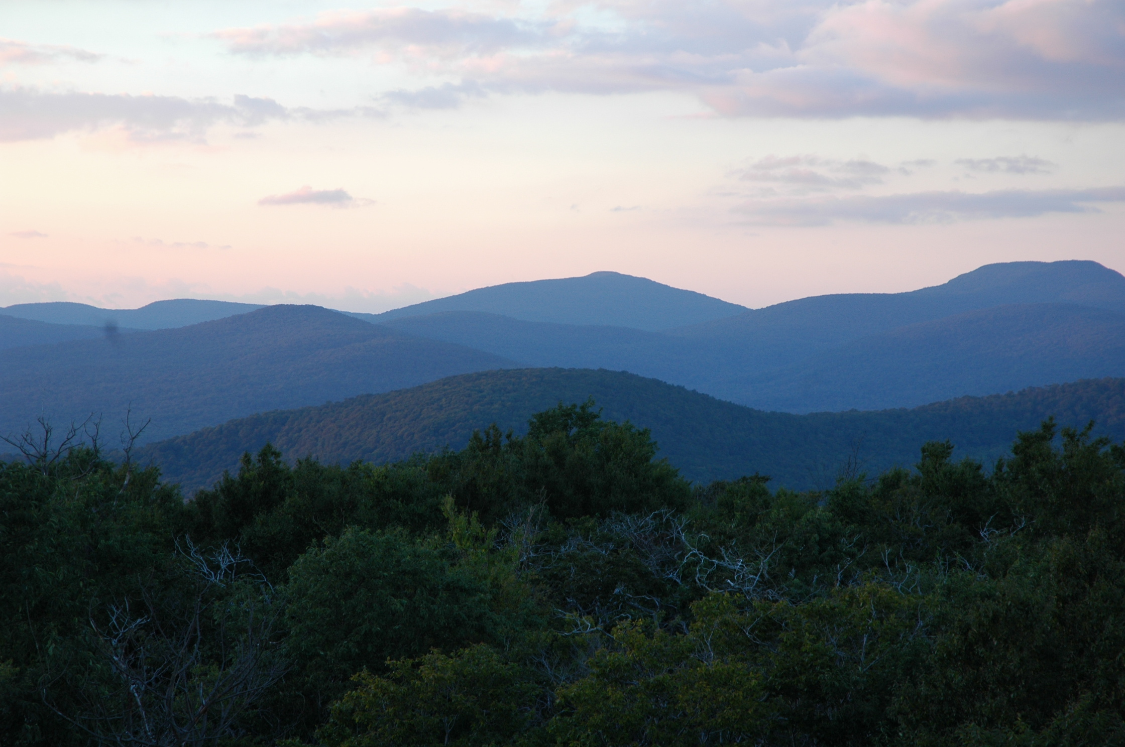 View from the Red Hill Fire Tower