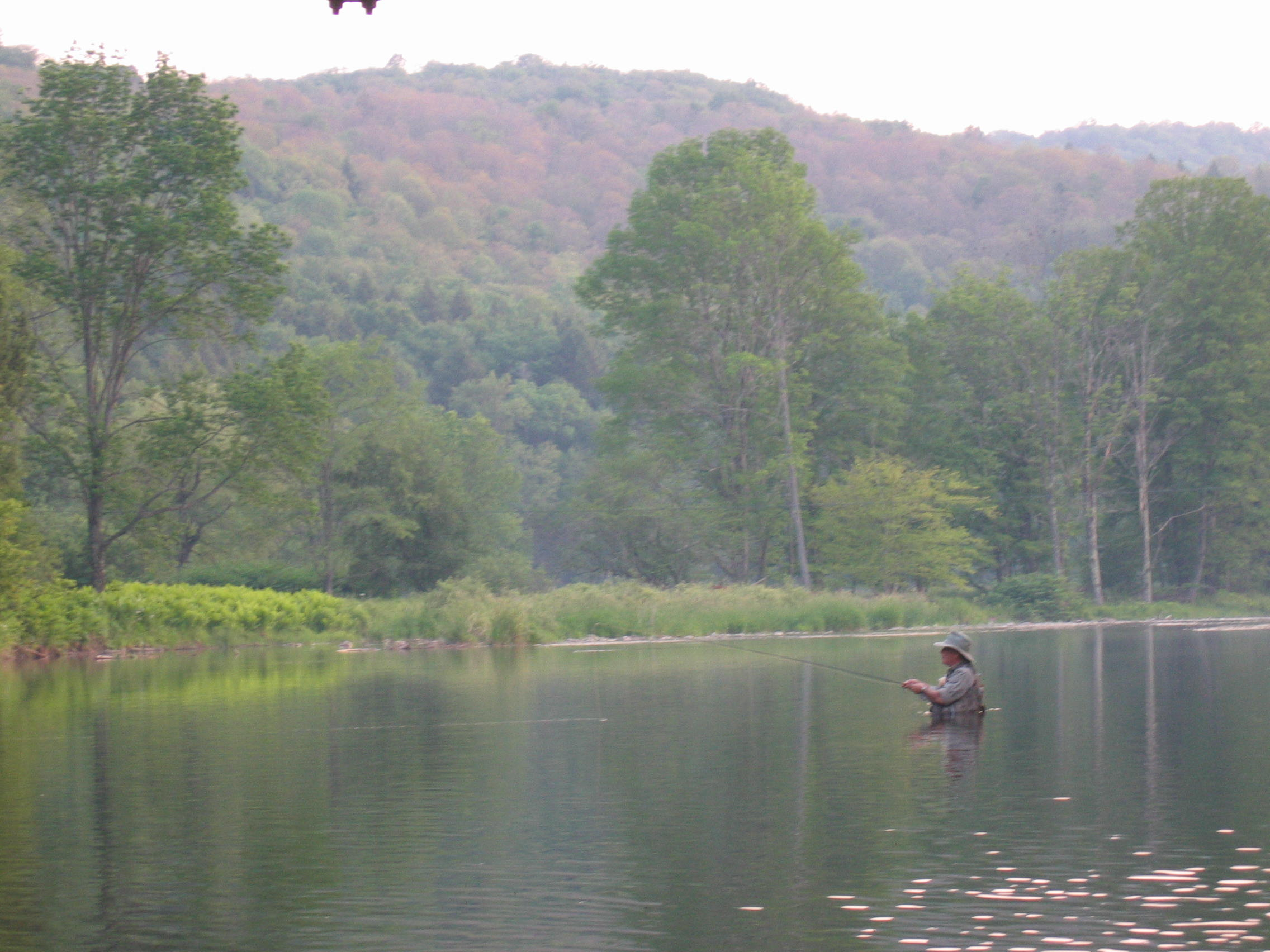 Fly fishing the Beaverkill River