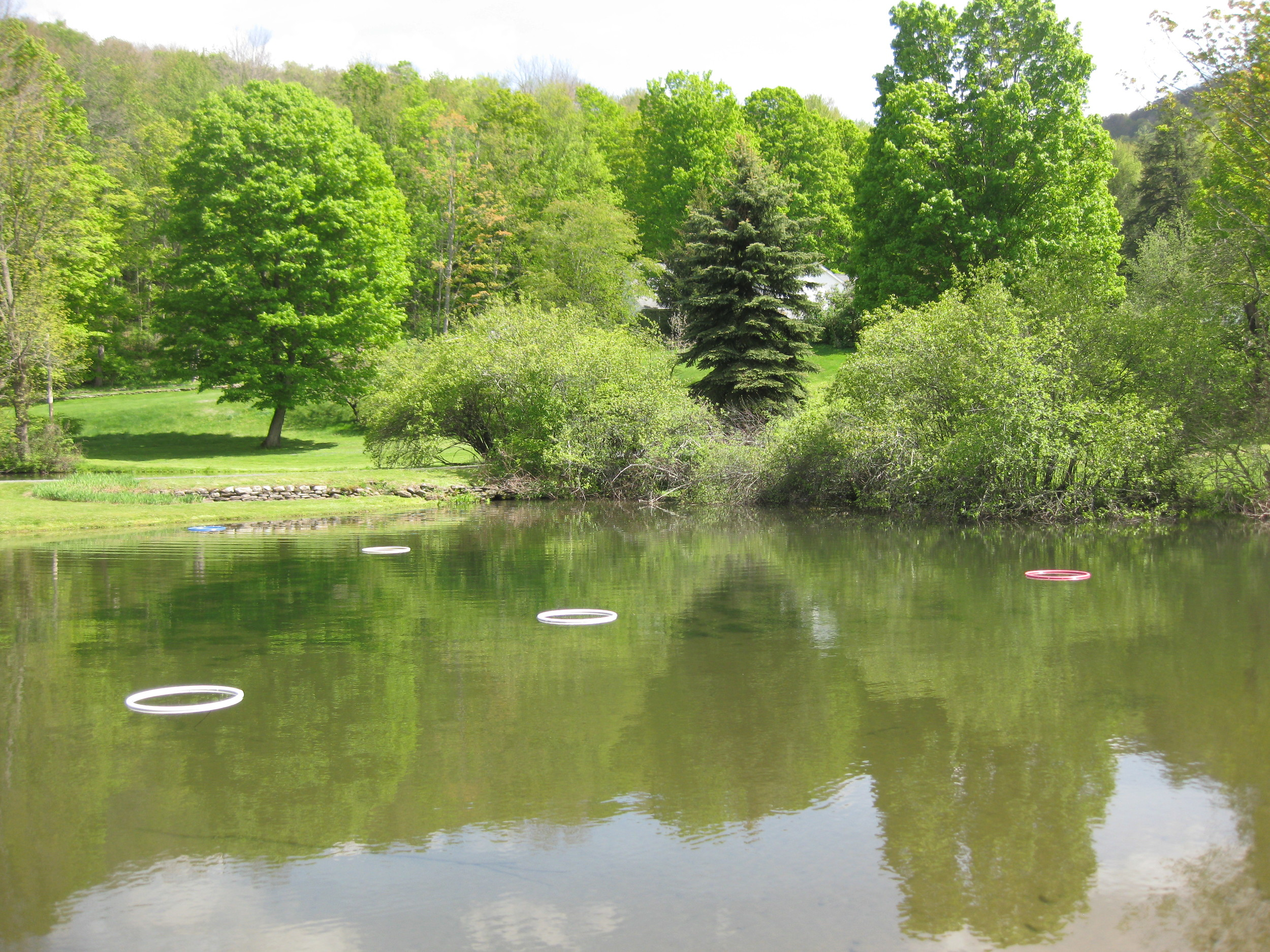 Casting pond at fly fishing school