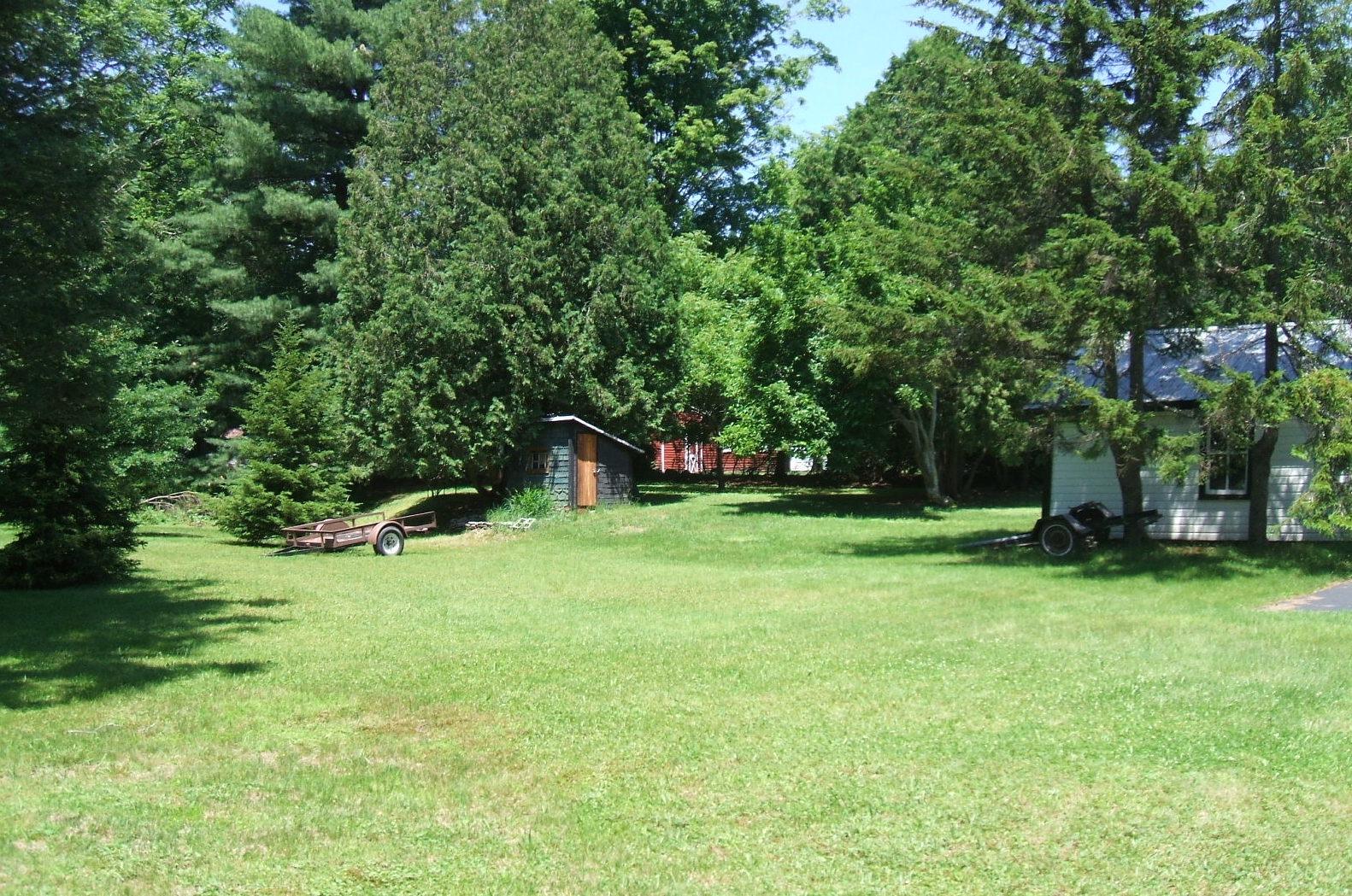 Yard View.JPG