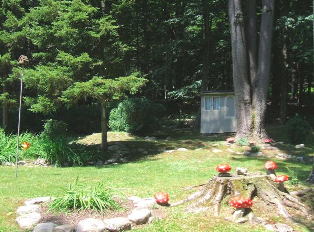 MG Backyard.jpg