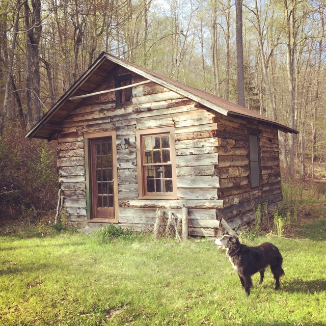 "The ""Love shack"", simple 1 rm cabin w/wood stove."