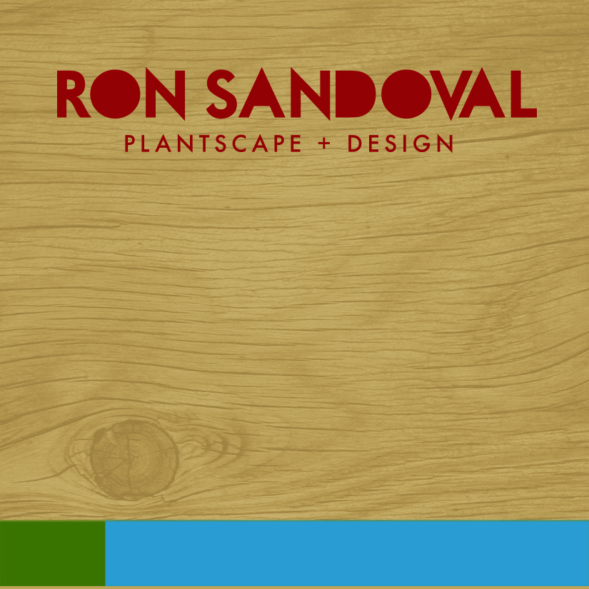 rondoval_2016_businesscard_front_final.jpg