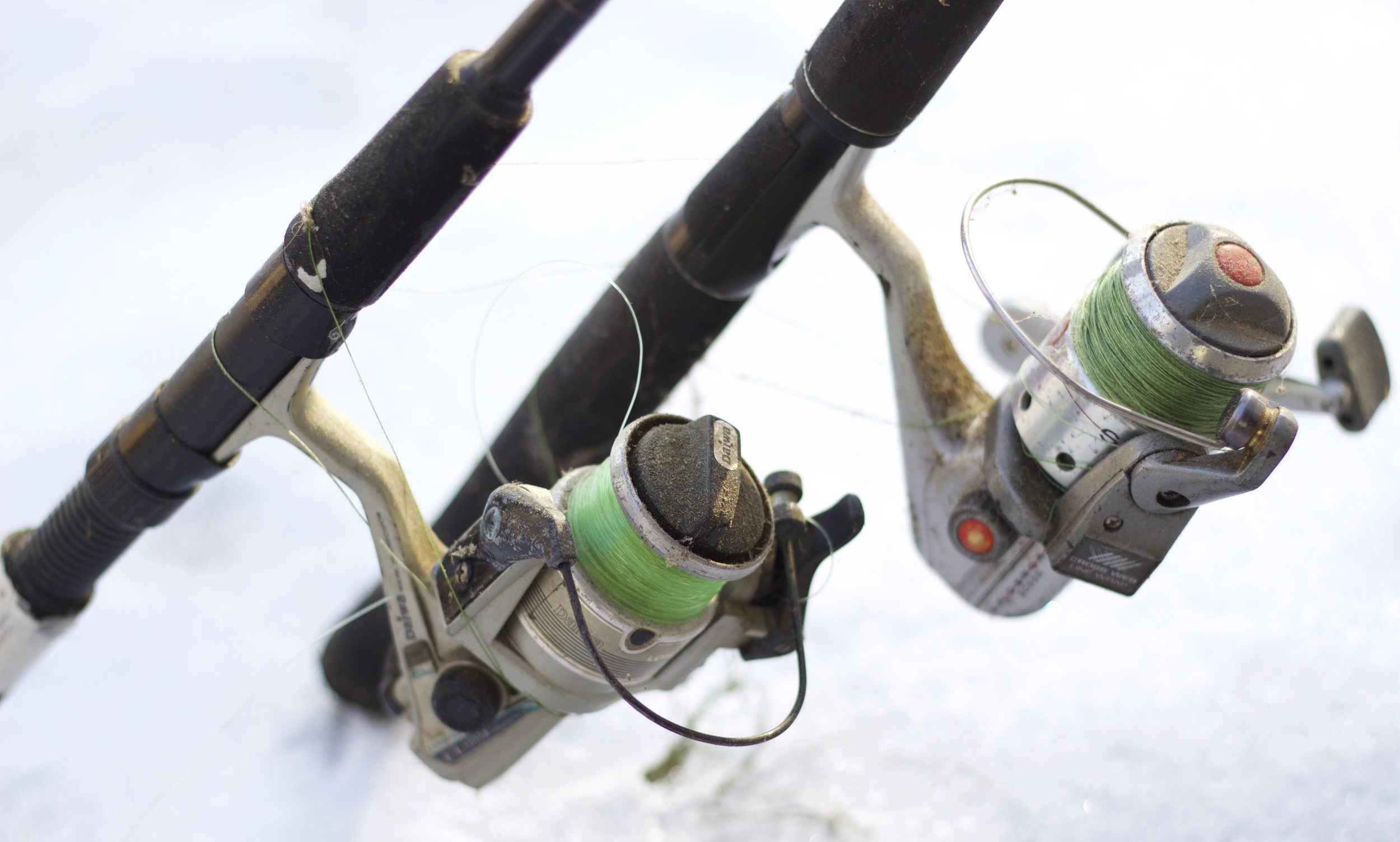 Time to dust off the ol' fishing rods...