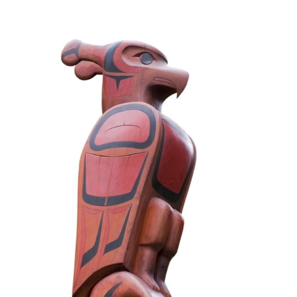 Canadian Indigenous Health Risk factor surveillance