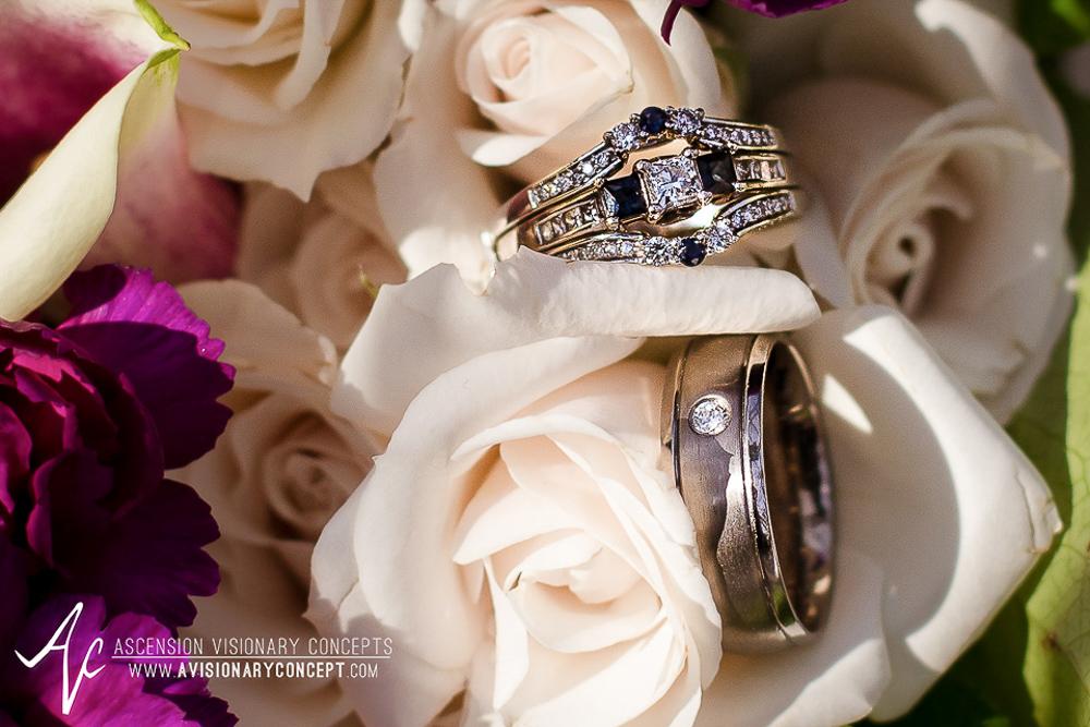 Lehigh Valley Weddings: Saucon Valley Promenade - The Eastonian