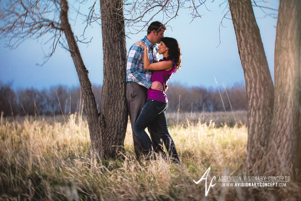 Buffalo Engagement Photography Urban City Anniversary Photography 024 Tall Grasses Blue Hour Strobist Tifft Nature Preserve.jpg
