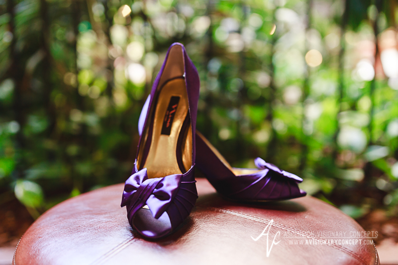Buffalo Wedding Photography The Columns Banquets Millennium Hotel 002 - Bride Purple Amethyst Shoes.jpg