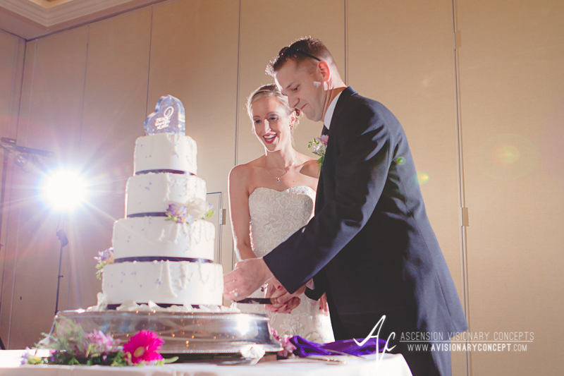 Buffalo Wedding Photography The Columns Banquets Millennium Hotel 047 - Cutting the Cake.jpg