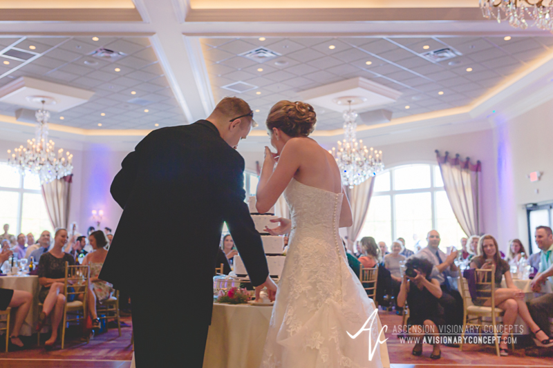 Buffalo Wedding Photography The Columns Banquets Millennium Hotel 049 - Cutting the Cake.jpg
