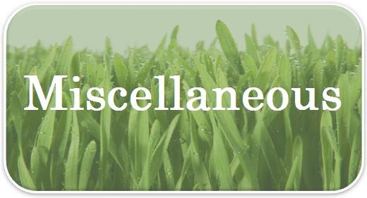 Misc Lawn Care FAQs.jpg