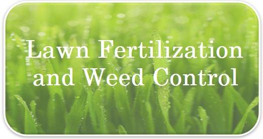 Fertilization and Weed Control FAQs.jpg