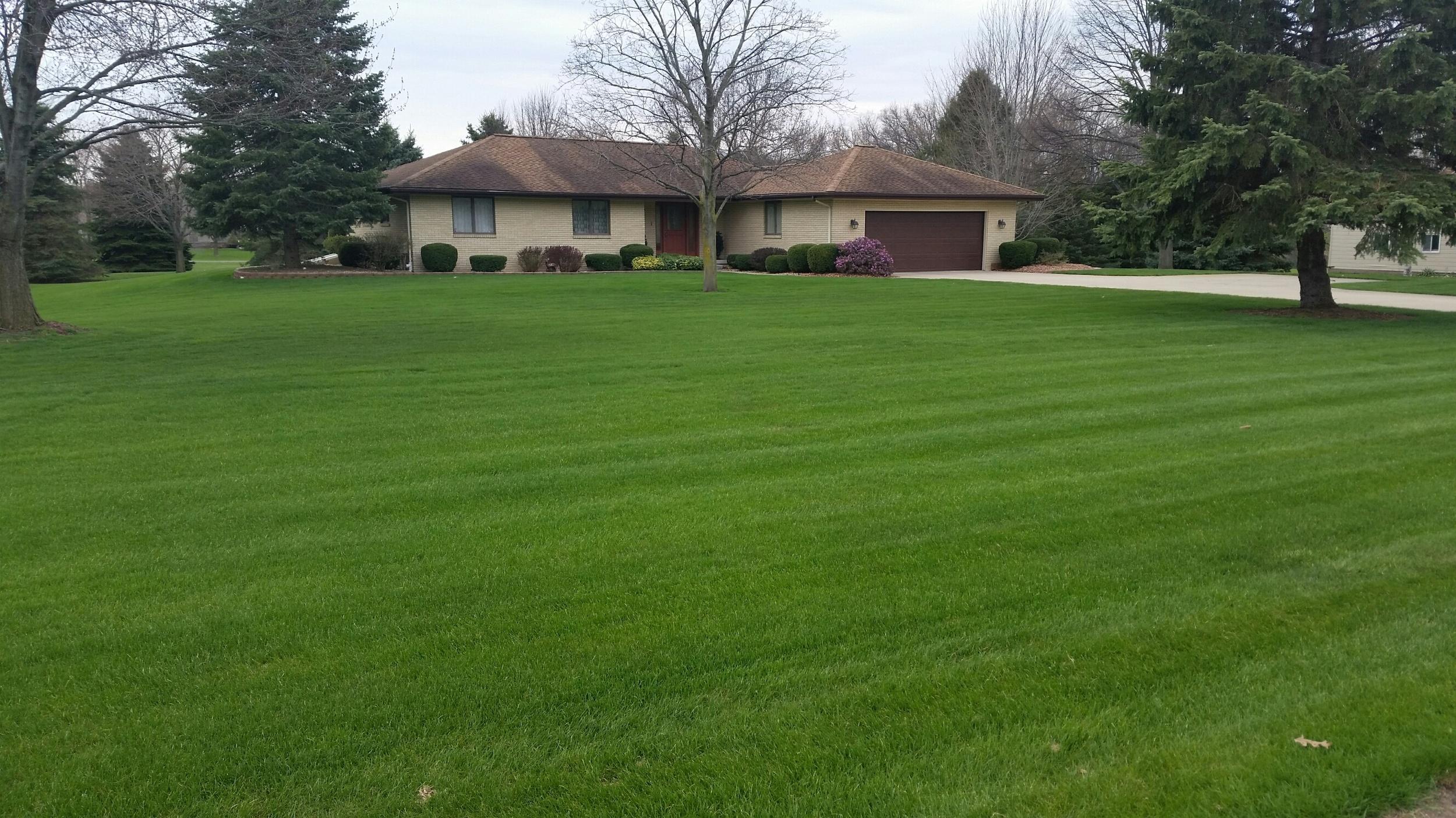 Jackson Feature Lawn 1.2