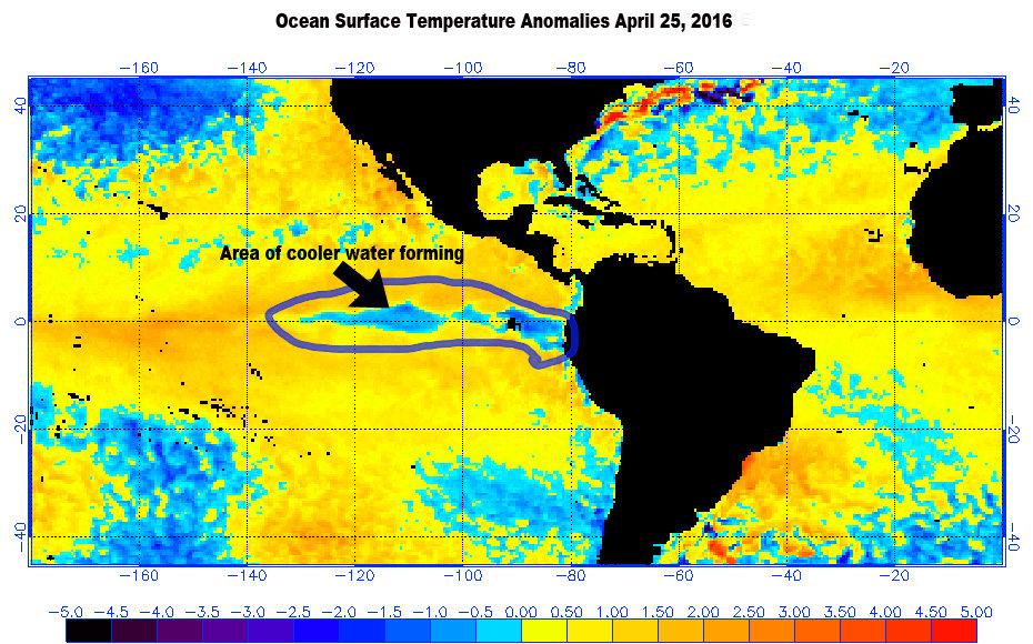La Niña's Cooler Weather Pattern (Source: NOAA/Mark Torregrossa|MLive)