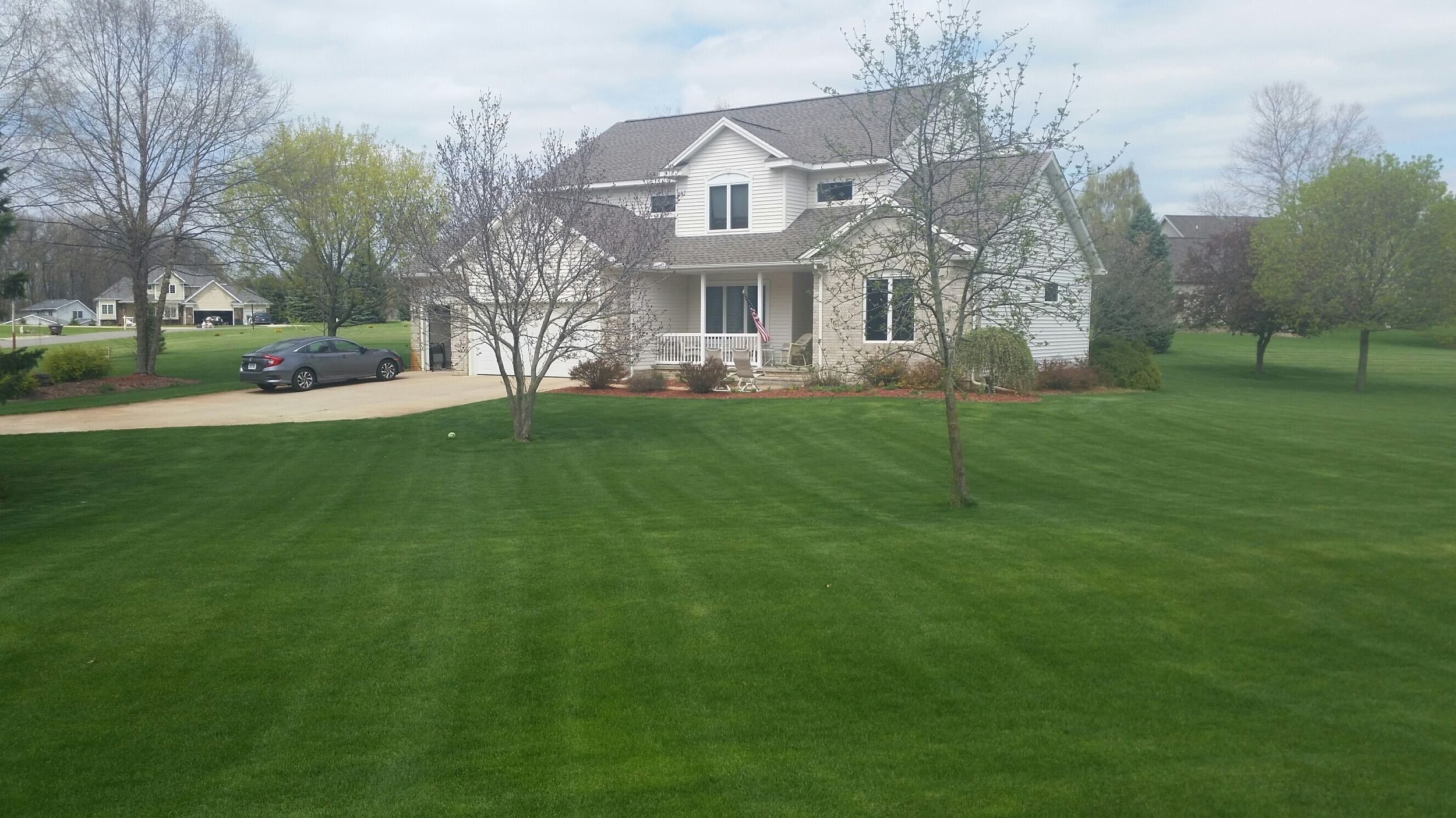 Feature Lawn Friday