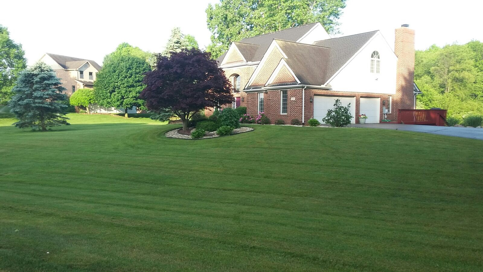 Feature Lawn Friday - 6.3.16