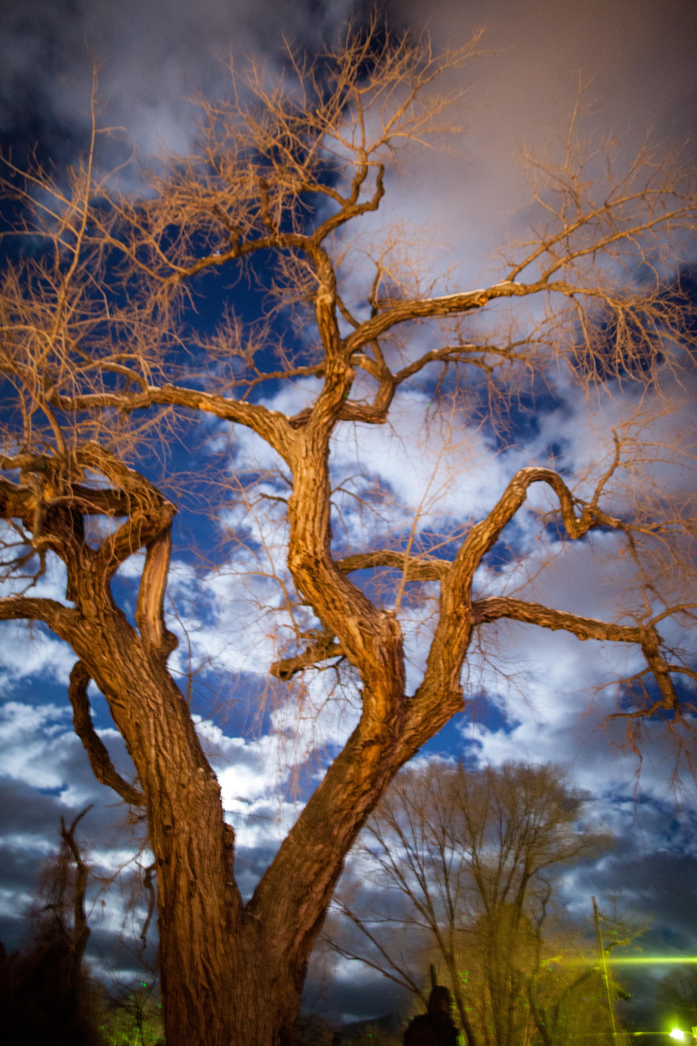Santa Fe Xmas-PERSONAL TONED-151224-103.jpg