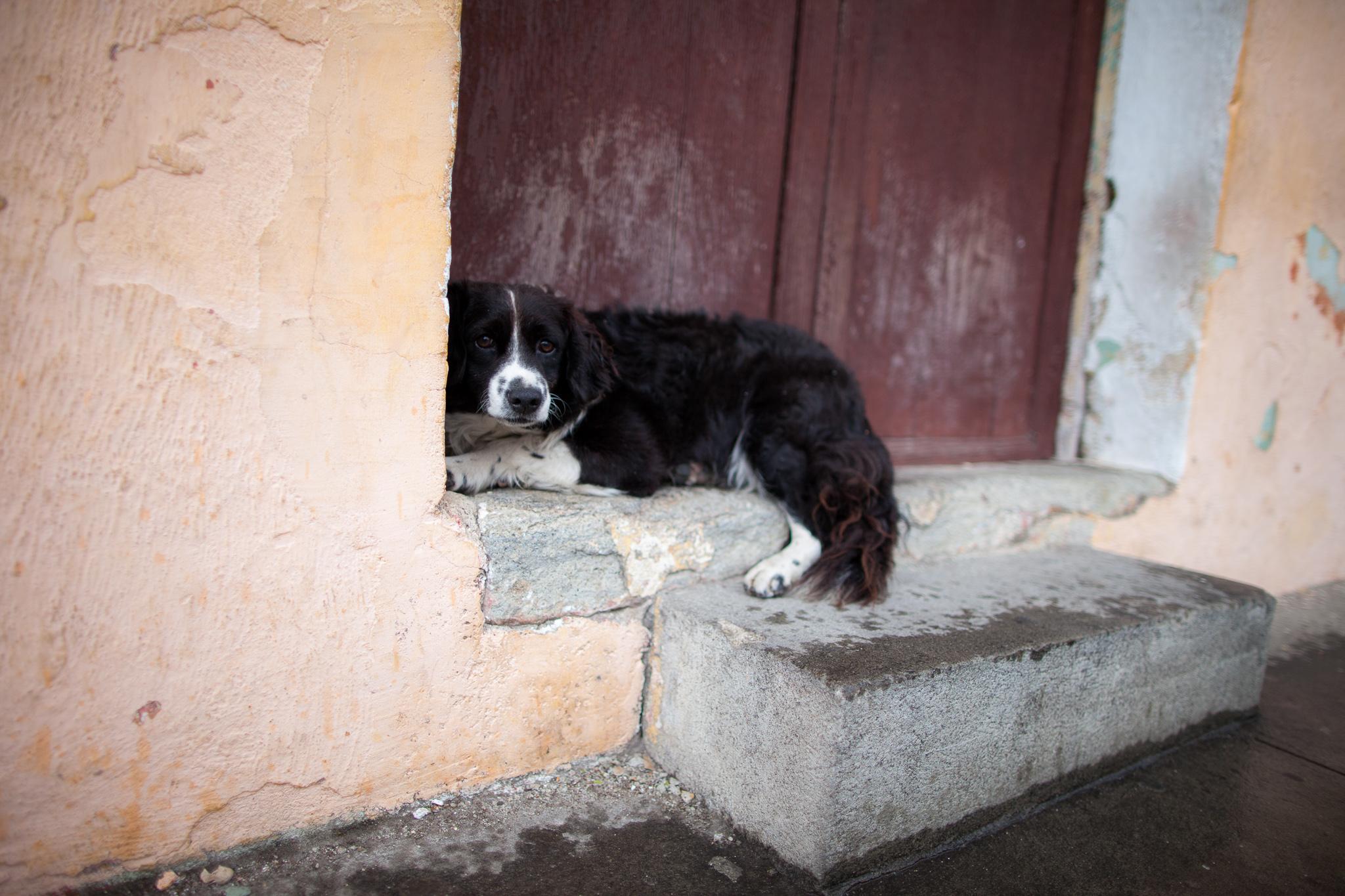 Guatemala-CP-160804-059.jpg