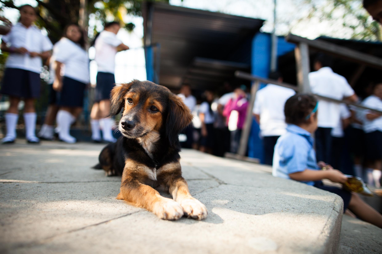 El Salvador2017-CPWEB-170217-051.jpg