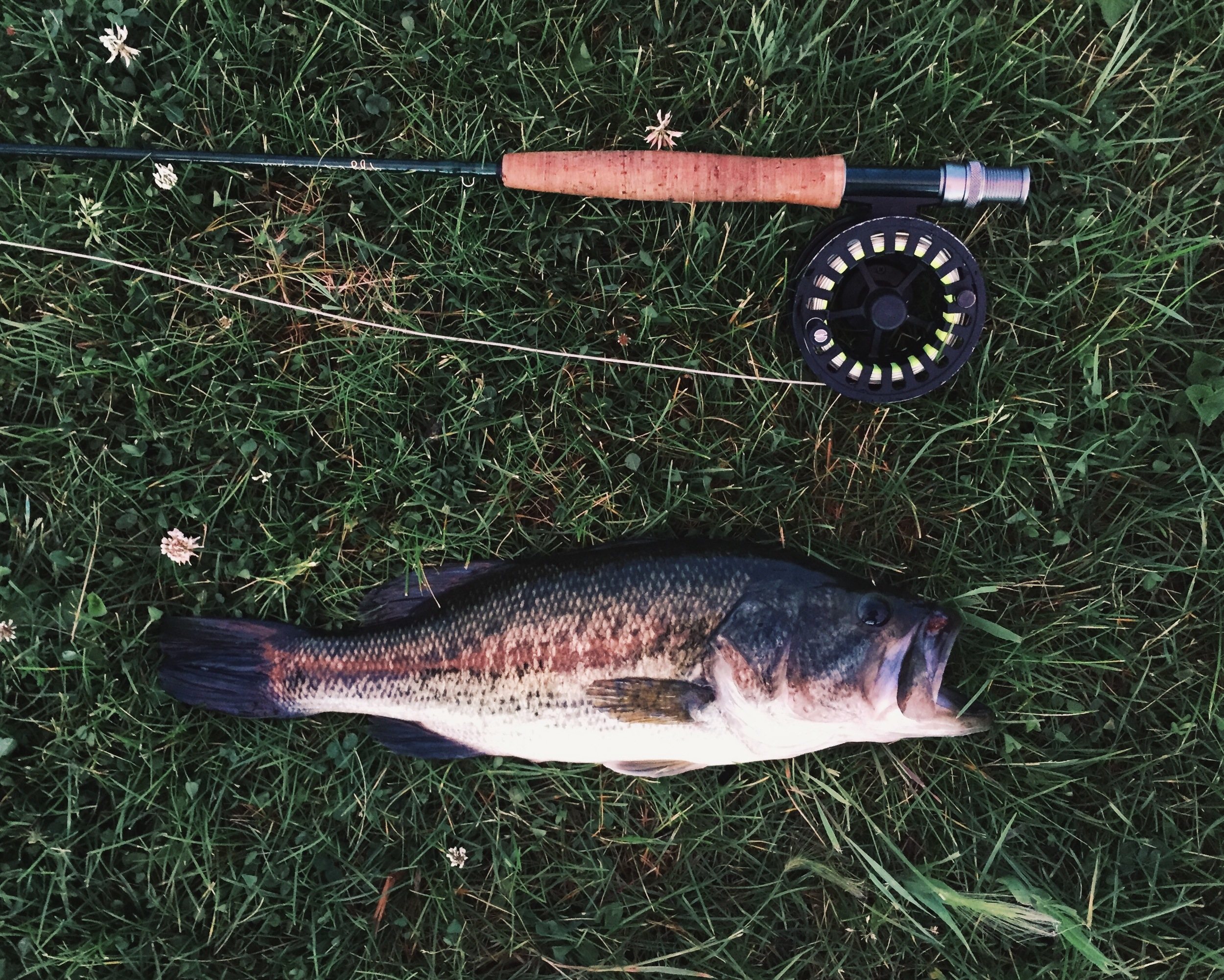 ankeny-fly-fishing-biggest-bass-sofar