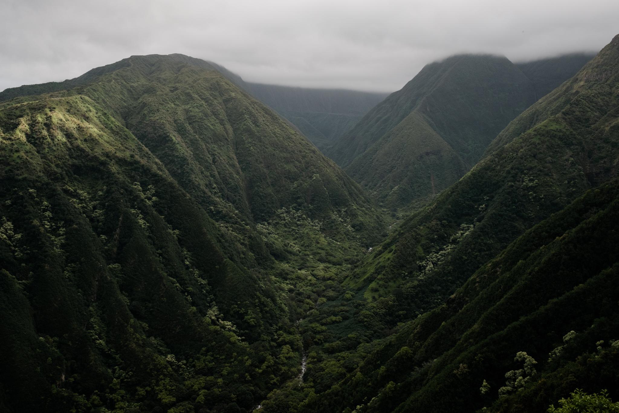 Waihee RIdge Trail (3 of 14).jpg