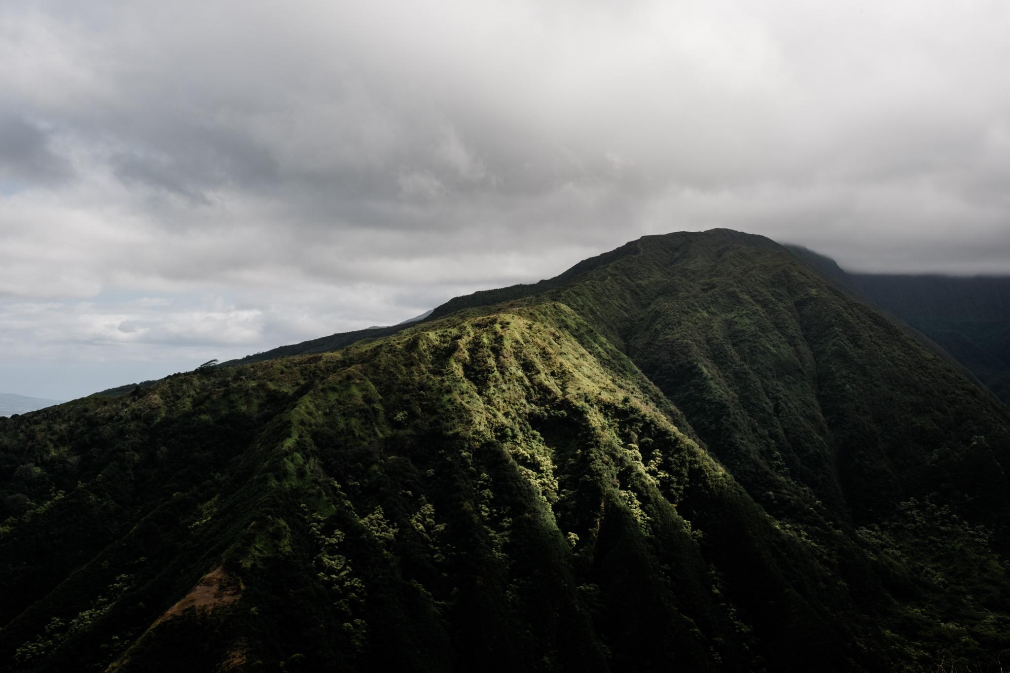 Waihee RIdge Trail (5 of 14).jpg