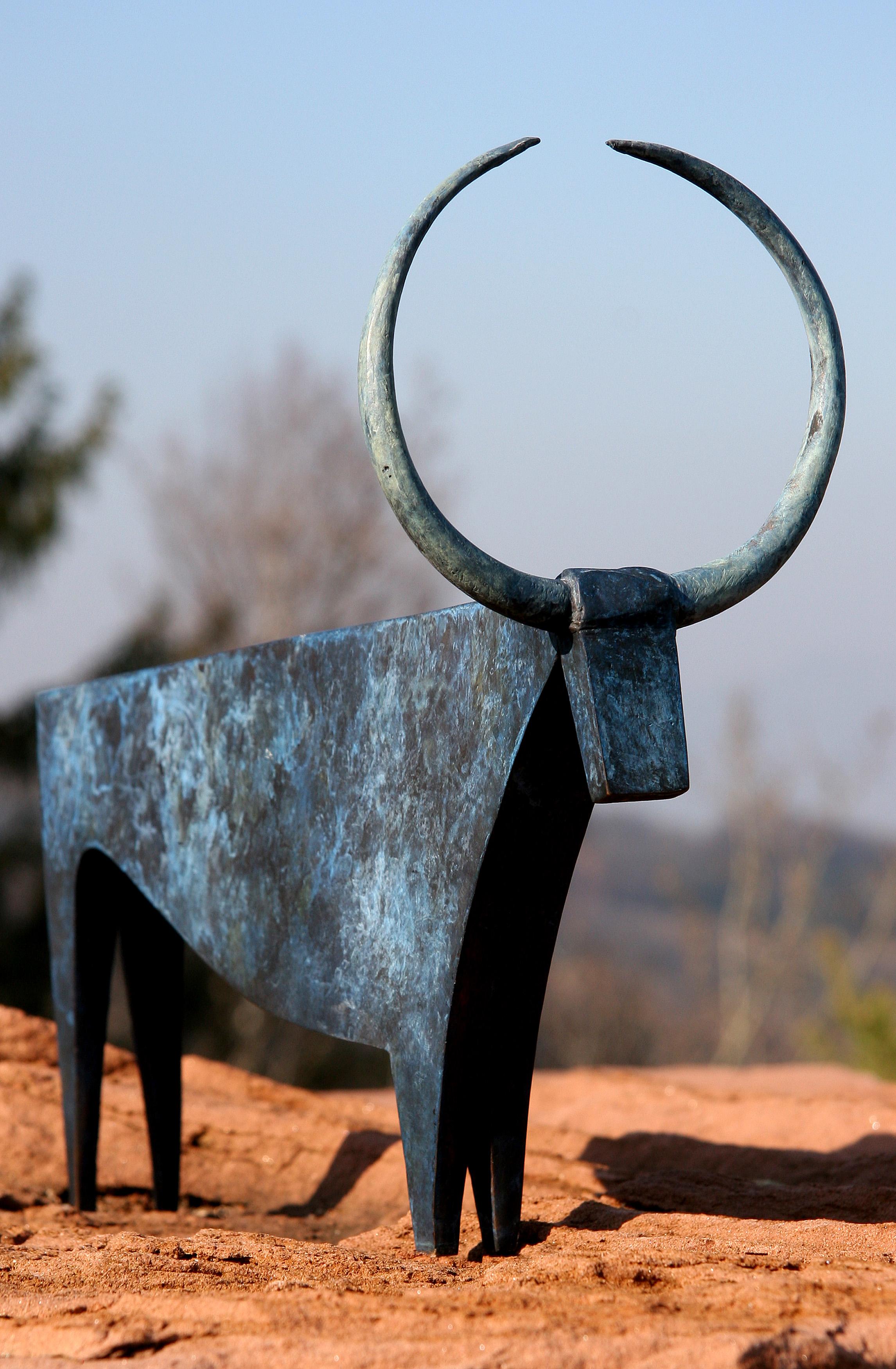 Toro solaire
