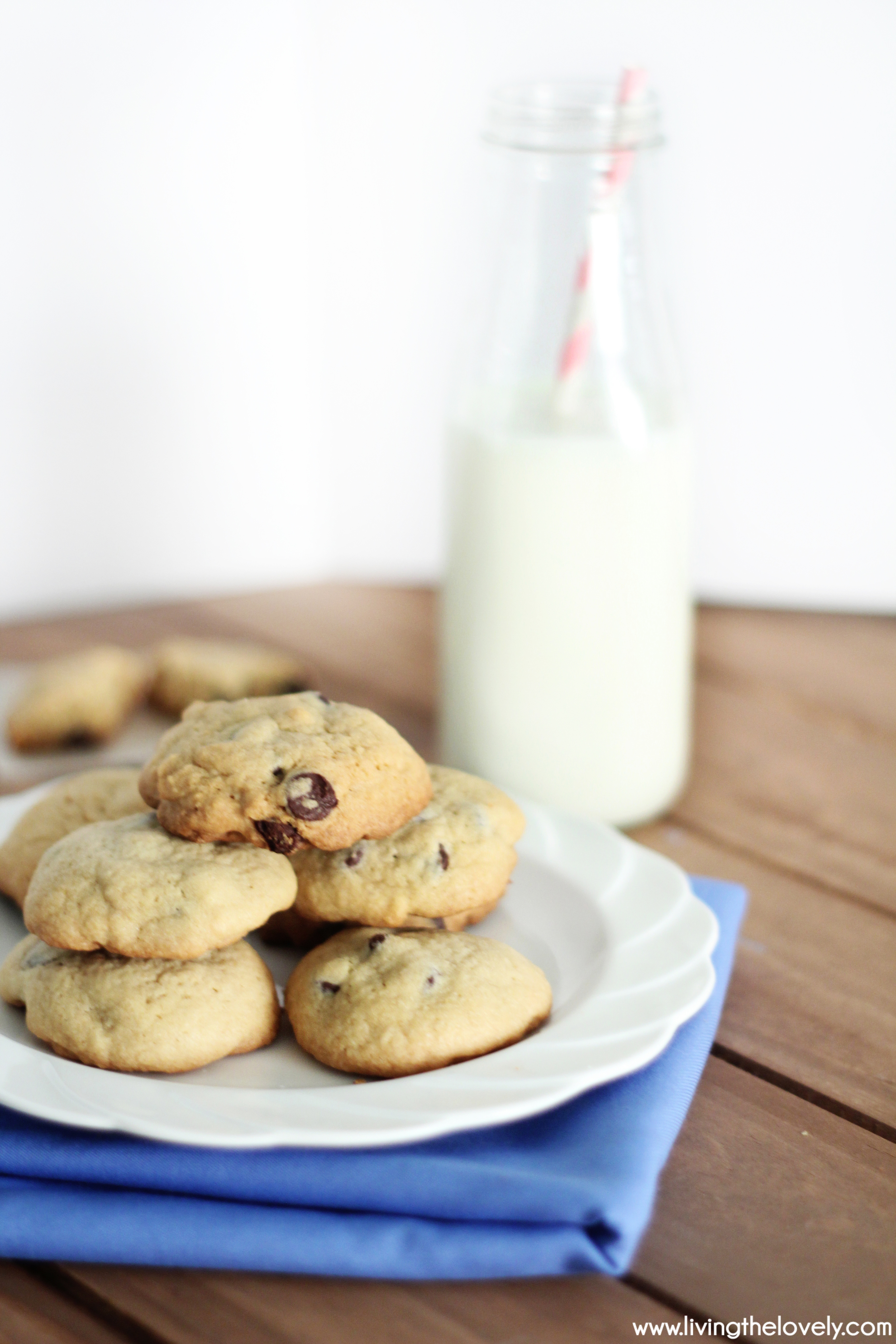 The Fast and Easy Recipe for the first ever Chocolate Chip cooke recipe ever! This is the original recipe accidentally created by Mrs. Wakefield in the 1930's.....and its delicious! A perfect classic chocolate chip cookie....because it is! | www.livingthelovely.com