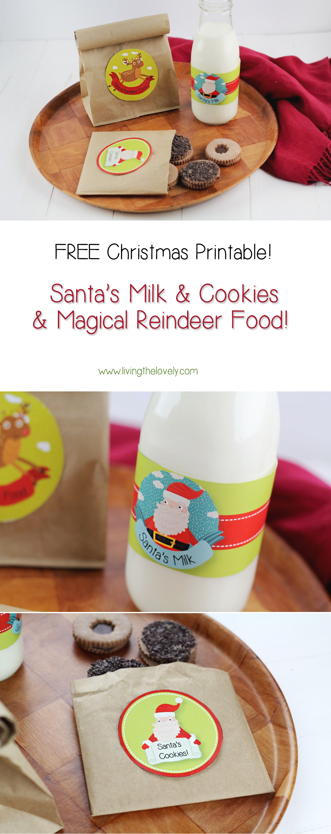 A fun little christmas printable ! And more importantly its free ;) Its a great DIY craft to do with kids on Christmas eve :) Santa's Milks, Santa's Cookies, and Magical reindeer food!