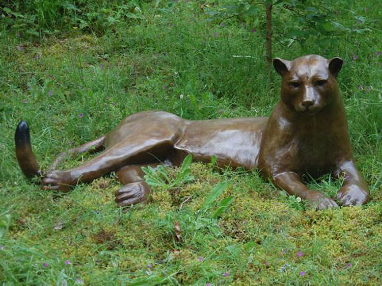 Image-3.-Languid-Cougar.jpg