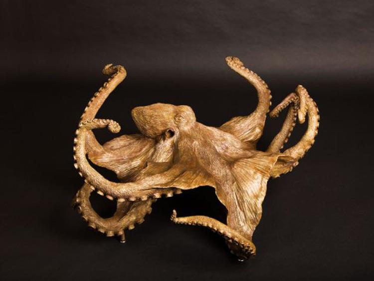 Image-37-Giant-Octopus.jpg