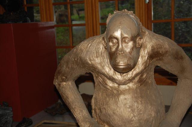 Image 63 In Progress Orangutan.JPG