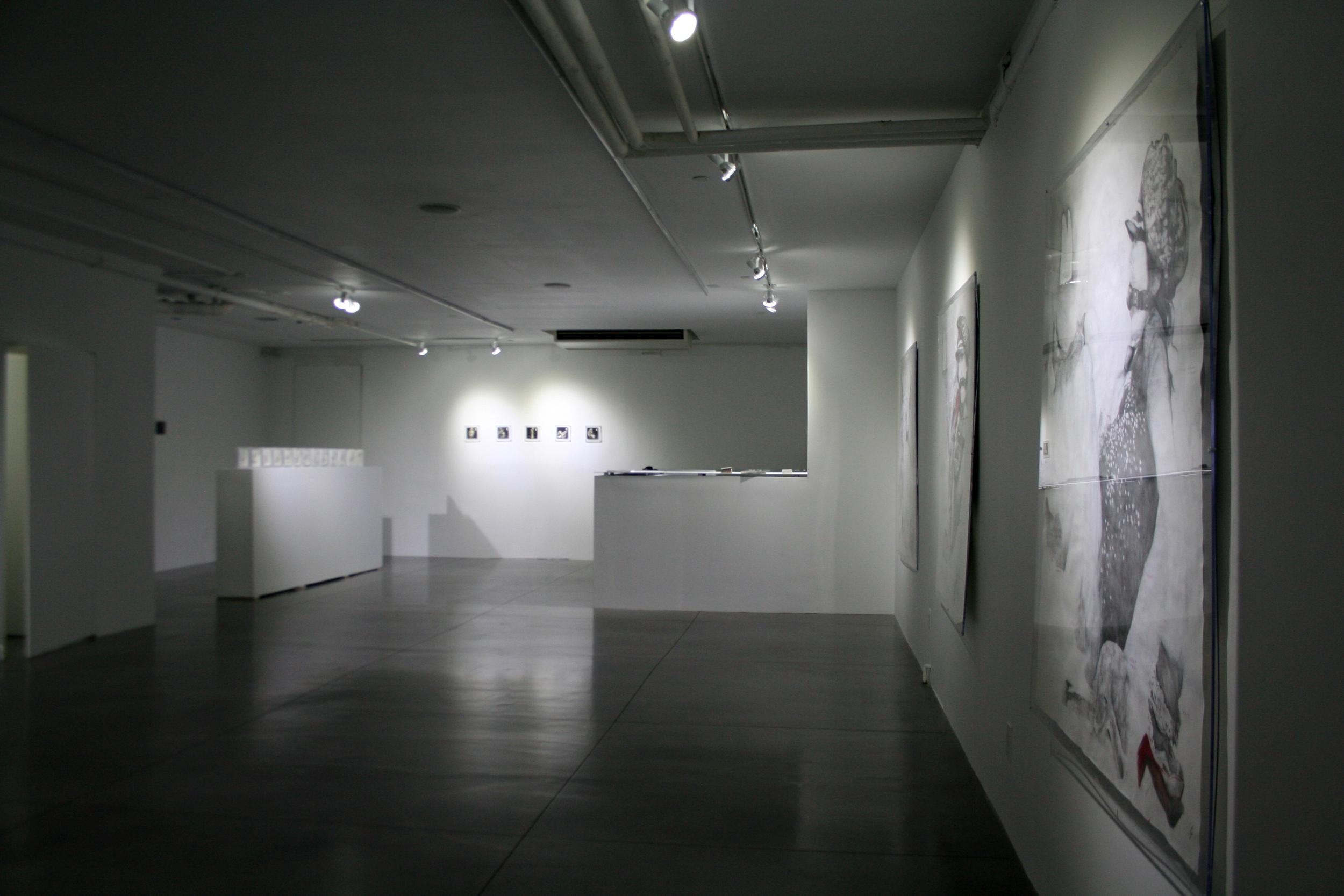 Wax drawings and 3 loop animations on ipad. BosiDamjanovic Gallery NYC  2011