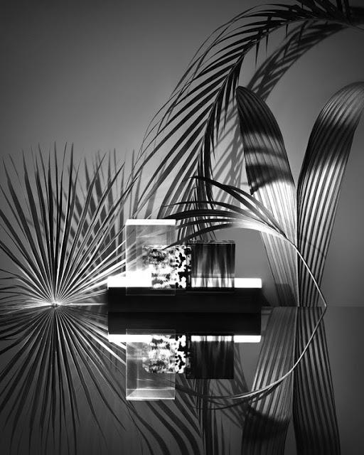 copacabana-josephine-choquet-06-600x750.jpg