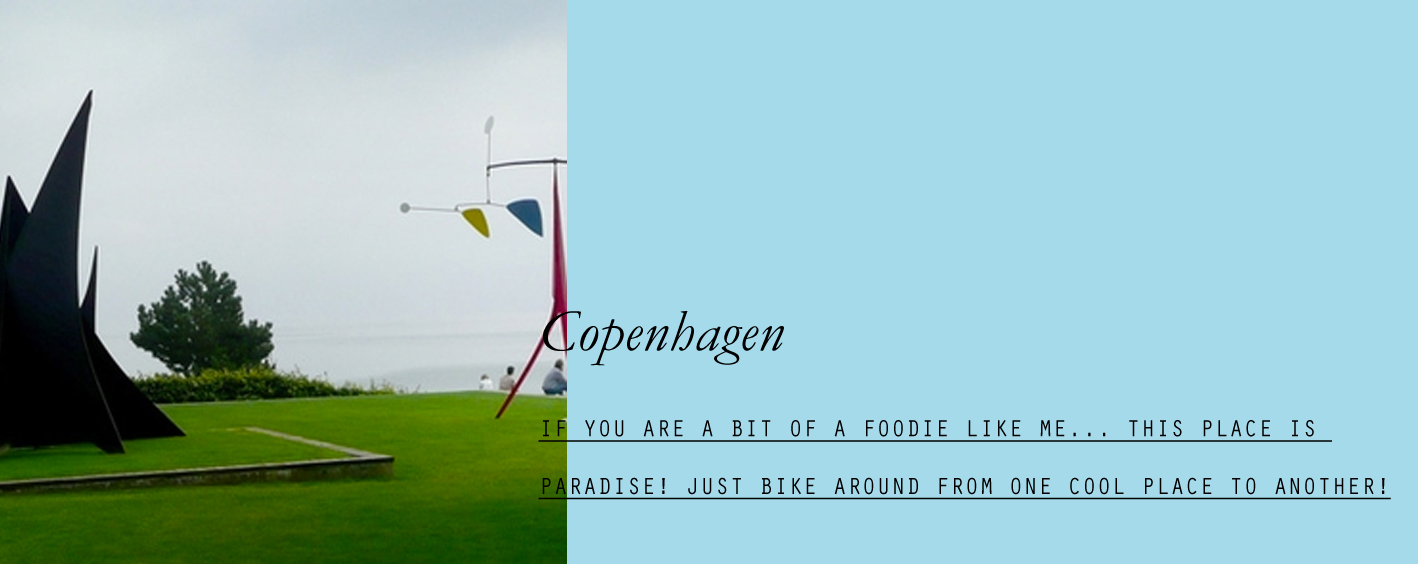 copenhagen-06.jpg