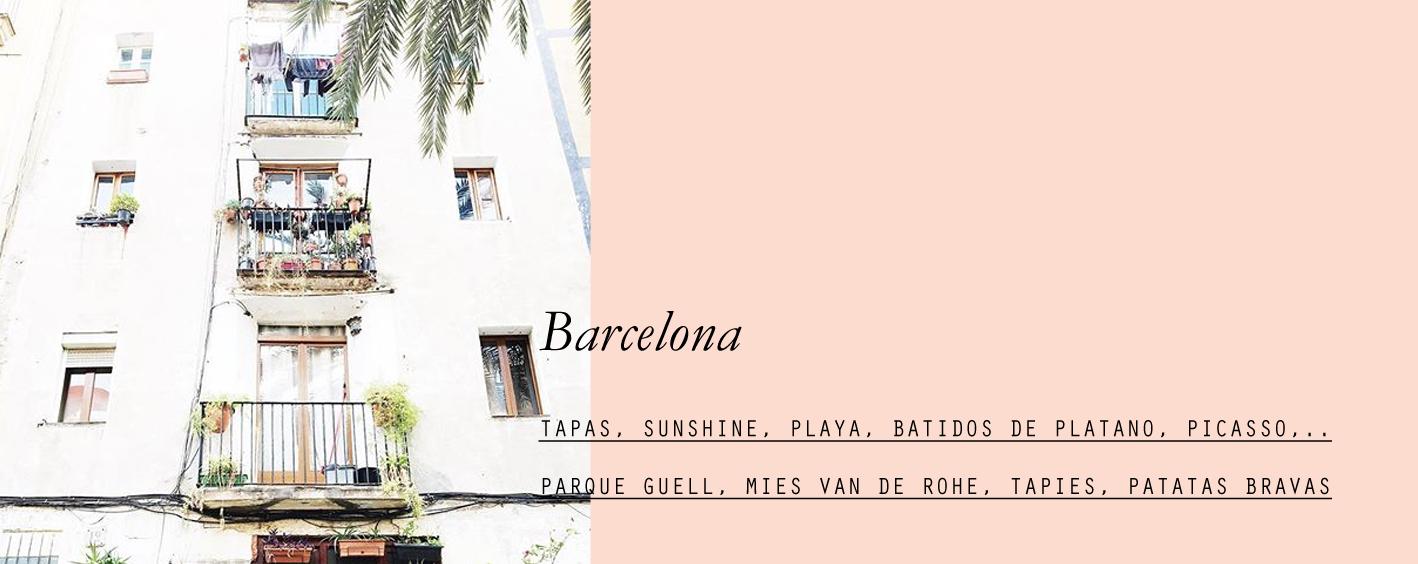 barcelona-lespetitespestes-07.jpg
