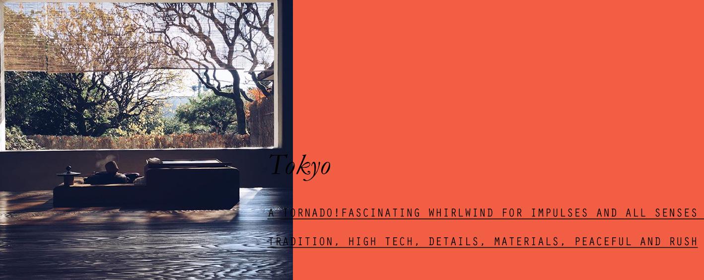 tokyo-lppcityguidetotokyo-lppcityguide-25.jpg