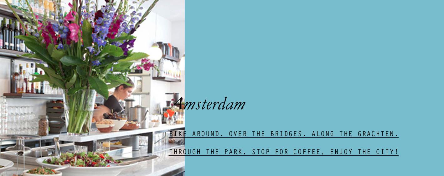 Amsterdam- lppcityguideamsterdam-09.jpg