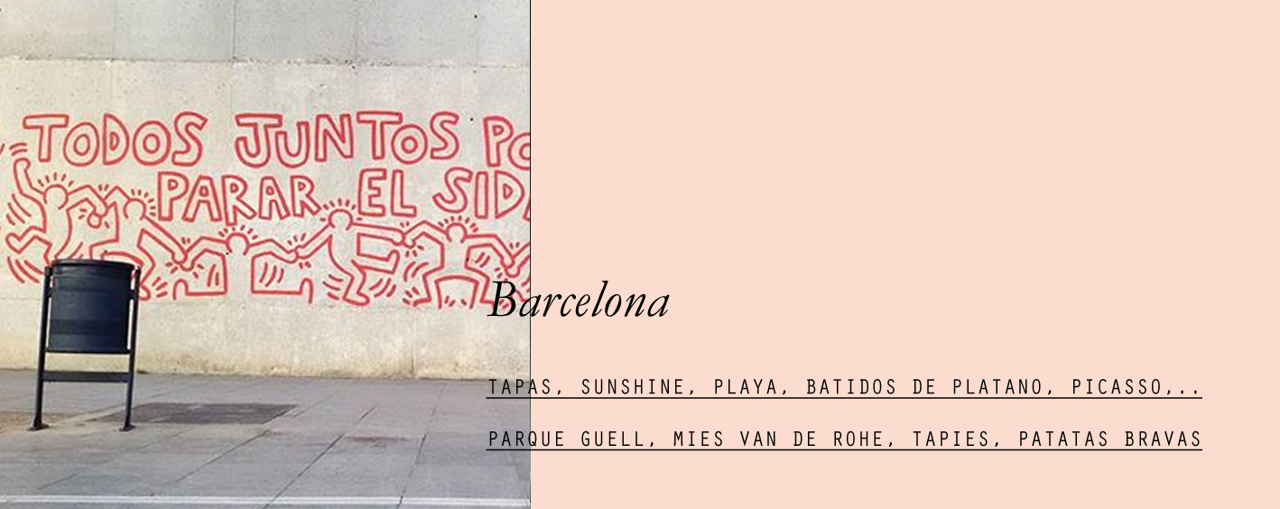 barcelona-lespetitespestes-01.jpg